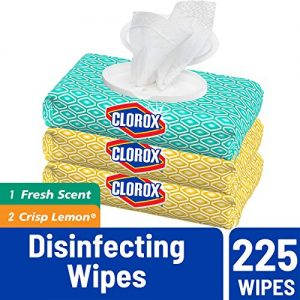 Clorox Disinfecting Wipes Value Pack 19