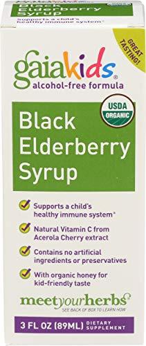 Gaia Herbs, Kids Black Elderberry Syrup Organic, 3 Fl Oz