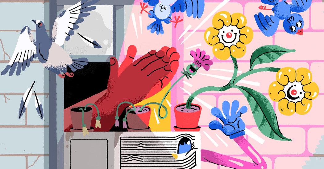 In Praise of Quarantine Clapping 1