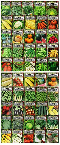 Premium Herbs and Vegetables Seeds - 50 Pack