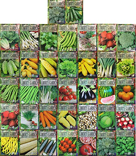Premium Herbs and Vegetables Seeds - 37 Pack