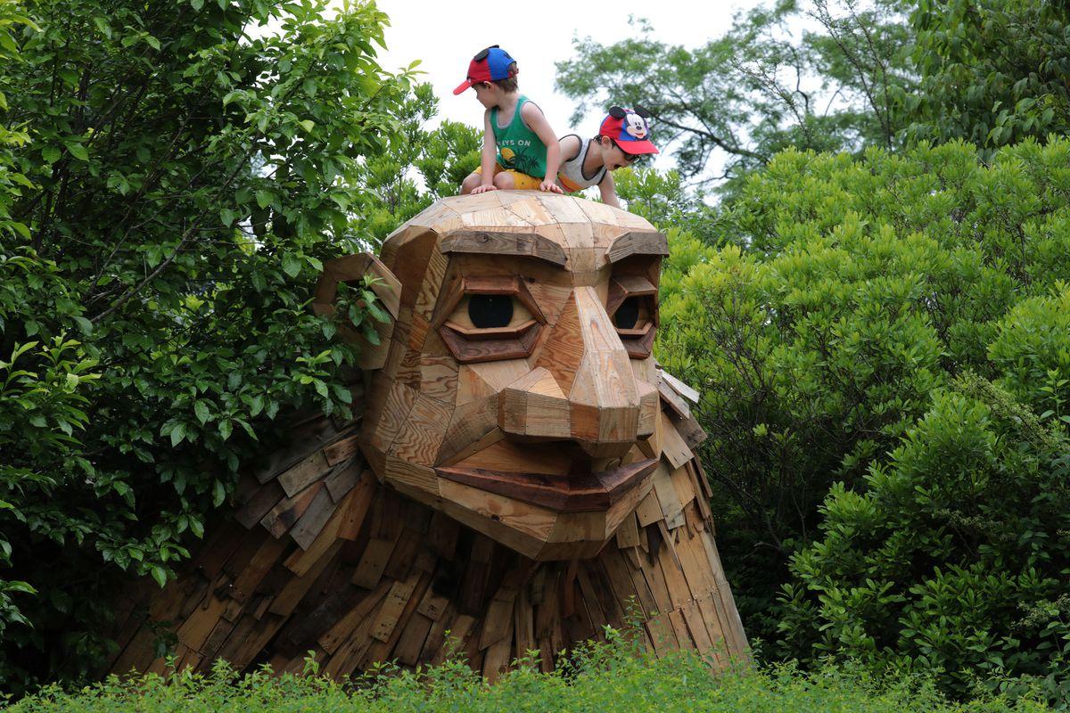 Morton Arboretum to reopen for members June 1 after coronavirus closure 1