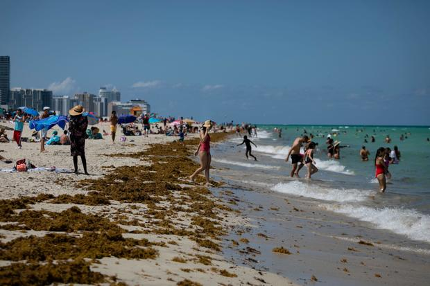 Florida reports more than 4,000 new COVID-19 cases, another record 1