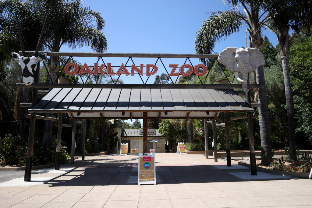Coronavirus: Oakland Zoo to reopen, outdoor dining can resume in Alameda County 1