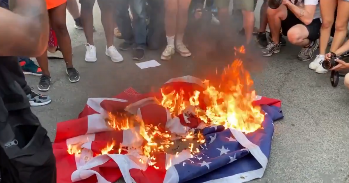 VIDEO: Liberal Protestors Burn American Flag Outside White House in Defiance of Independence Day 1