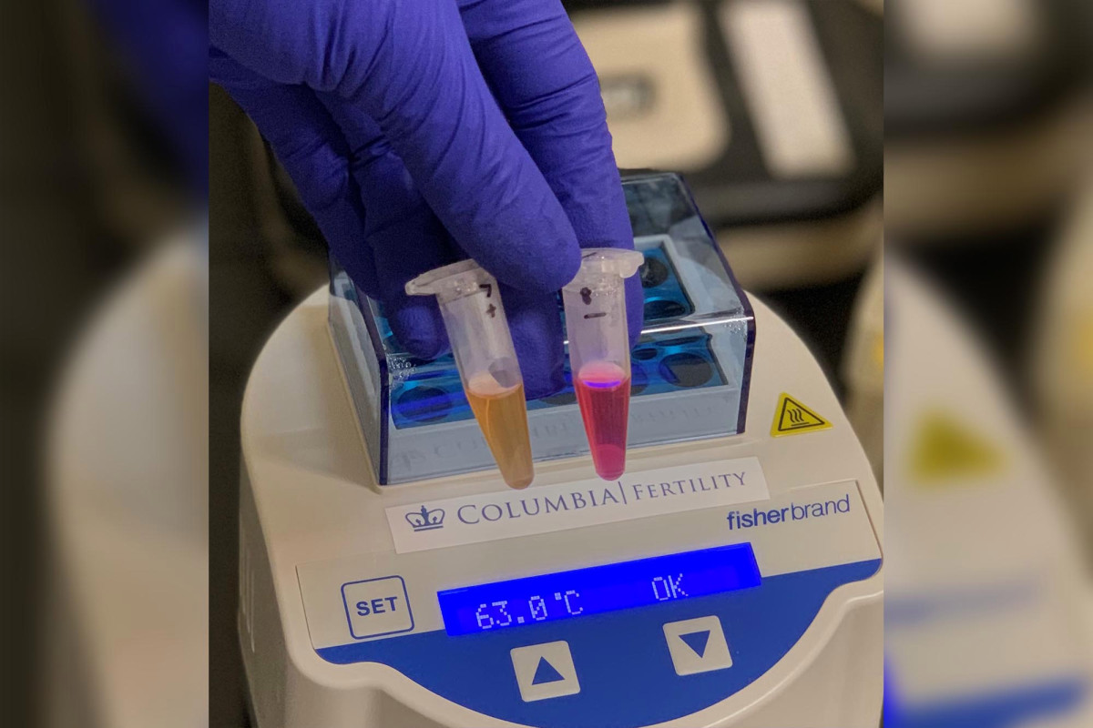 NYC doctor develops rapid, noninvasive COVID-19 test 1