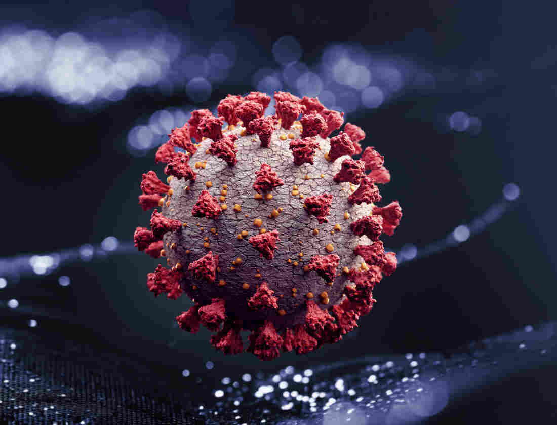 Why The Novel Coronavirus Has The Power To Launch A Pandemic 1