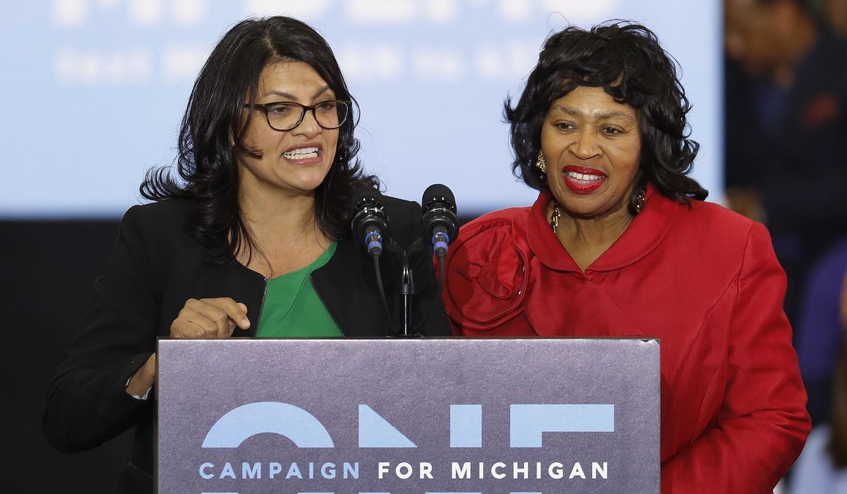 Michigan primary tests Tlaib, features 2 open House races 1