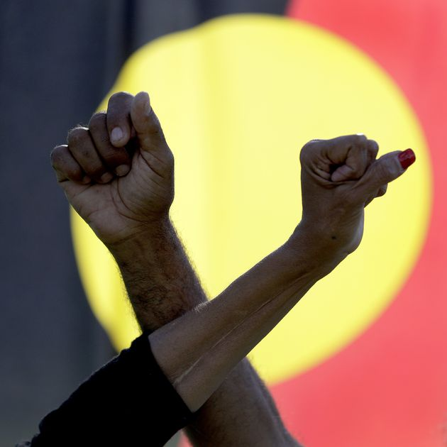 Sacred tree bulldozed to build highway in Australia, dozens of protesters arrested 1