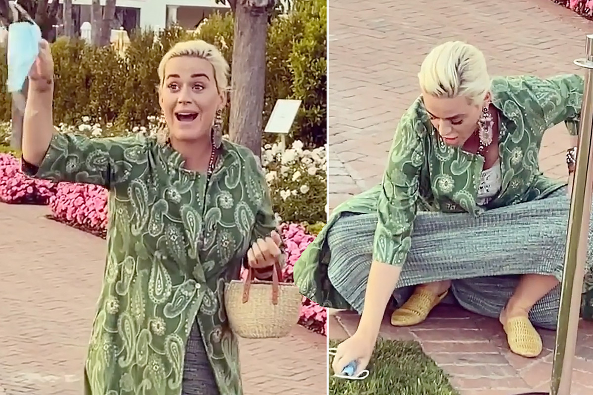 Katy Perry uses face mask to pick up dog poop 1