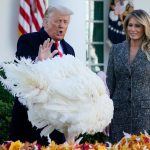 White House Thanksgiving proclamation calls for Americans to 'gather' even as Covid-19 surges 7