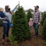 Many Americans turning to real Christmas trees as bright spot amid coronavirus 9