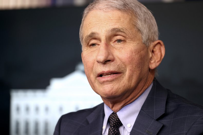 Fauci Says Christmas, New Year Won't Be 'Any Different' From Thanksgiving if Coronavirus Case Surge Continues 1