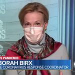 Birx Warns Vaccines Won't 'Save Us From This Current Surge' Of COVID-19 Cases 5