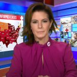 'Sick And Scared': MSNBC's Stephanie Ruhle Reveals She And Her Family Have COVID-19 6