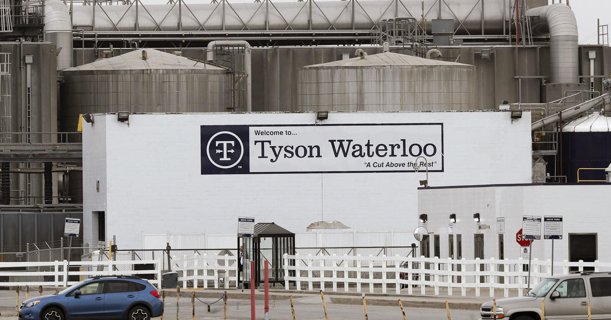 Fired Tyson manager defends COVID-19 bets as morale booster 1