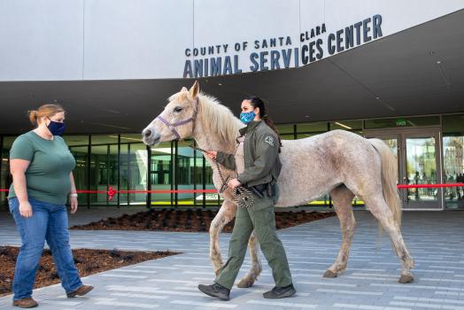 Photos: Santa Clara County opens new Animal Services Center in San Martin 1
