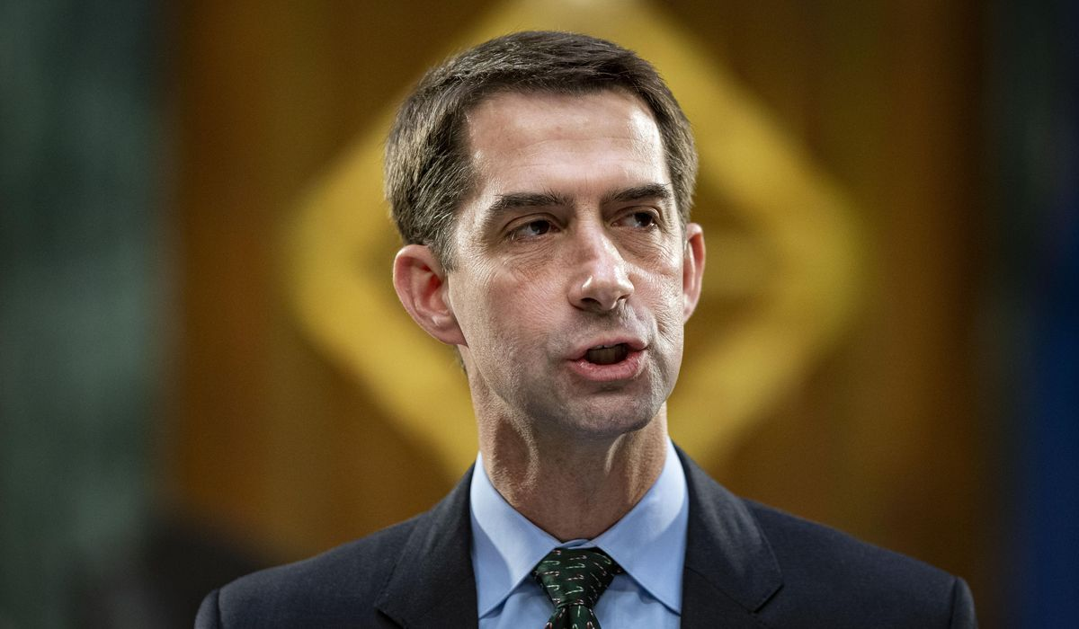 Sen. Tom Cotton insists 'the border is wide open' after Mayorkas claims border is secure 1