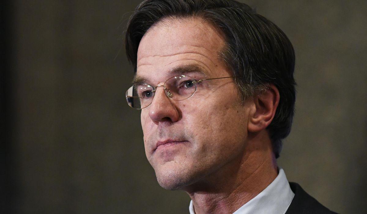 Dutch coalition talks halted after positive coronavirus test 1