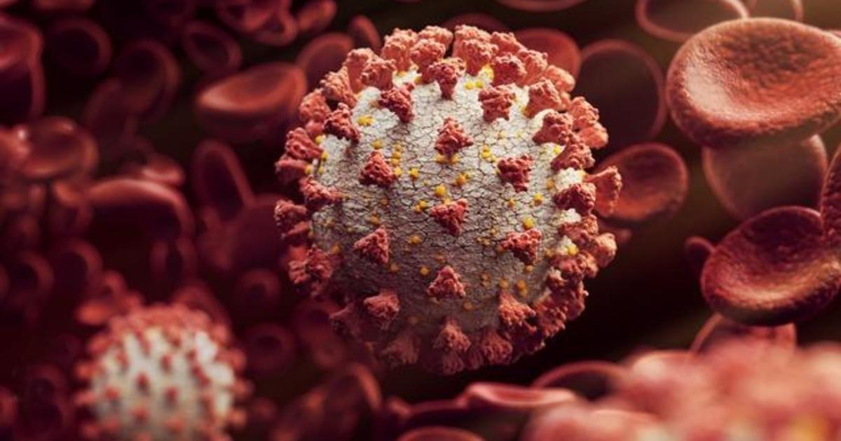 COVID-19 deaths will stall as coronavirus infections spike across the U.S., CDC says 1