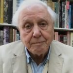 """Sir David Attenborough's """"The Year Earth Changed"""" explores nature's rebound amid COVID lockdowns 20"""
