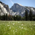 Yosemite National Park to limit summer visitation due to COVID-19 6
