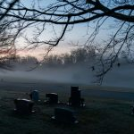 US suicides dropped last year amid coronavirus pandemic: CDC 7