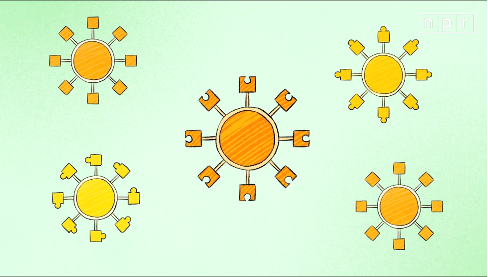 Visual Explainer: Why Some Coronavirus Variants Are More Contagious Than Others 1