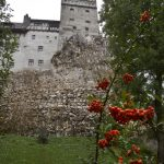 Dracula's castle proves an ideal setting for COVID-19 jabs 8