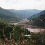 China's Mojiang mine and its role in the origins of COVID-19 2