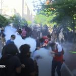Probe revisits basis to end Lafayette Park protest 7