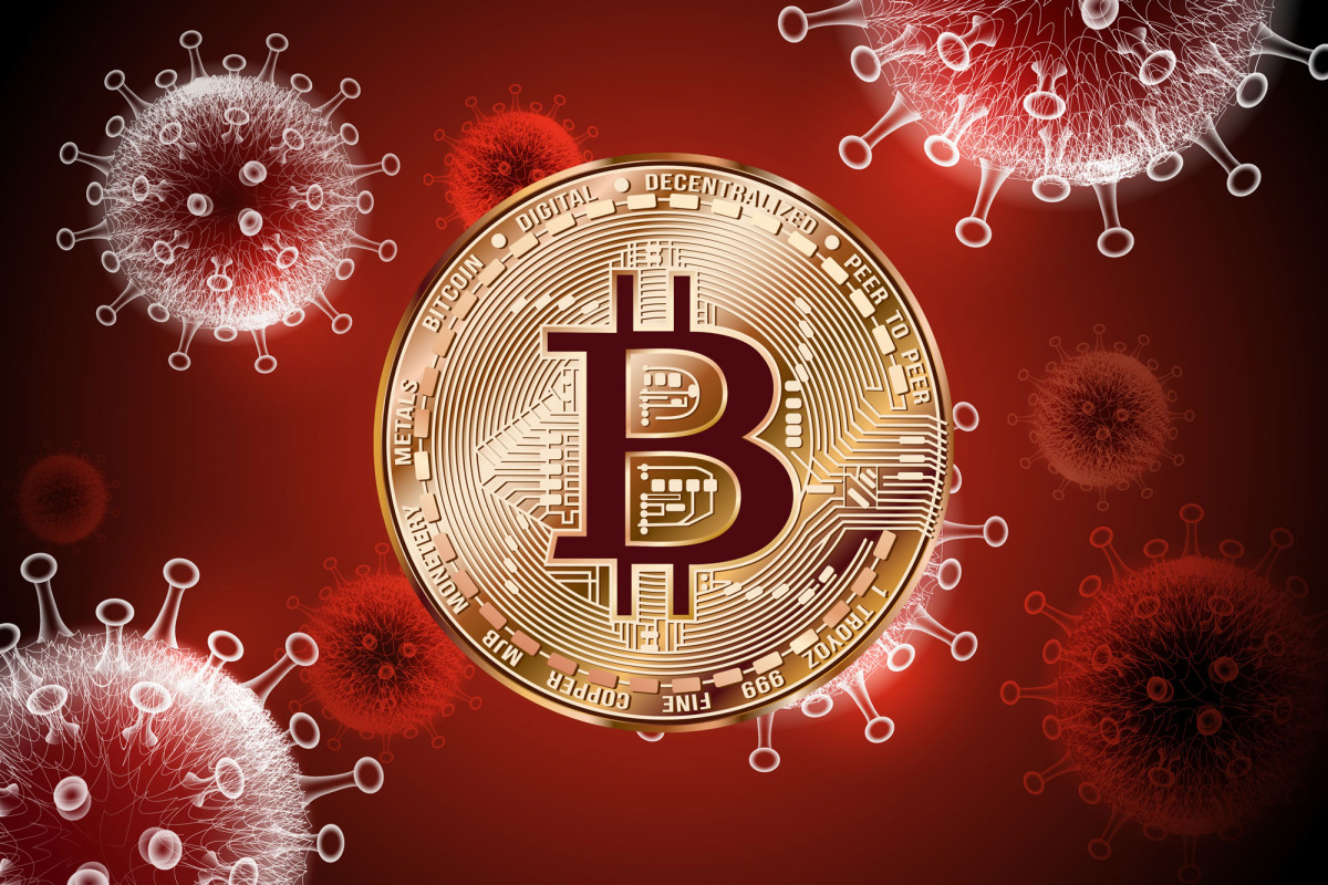 Techies battling COVID-19 following Miami Bitcoin conference 1