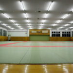 Child dies after being thrown 27 times in judo class 6
