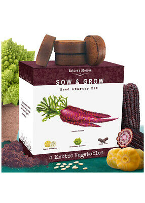 NATURE'S BLOSSOM SOW AND GROW SEED STARTER KIT 4 Exotic Vegetables