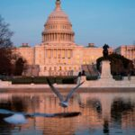 House physician reinstates mask mandate amid Delta variant spread in the US 8