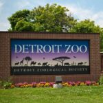 Detroit Zoo begins distributing COVID-19 vaccines for various animals 5