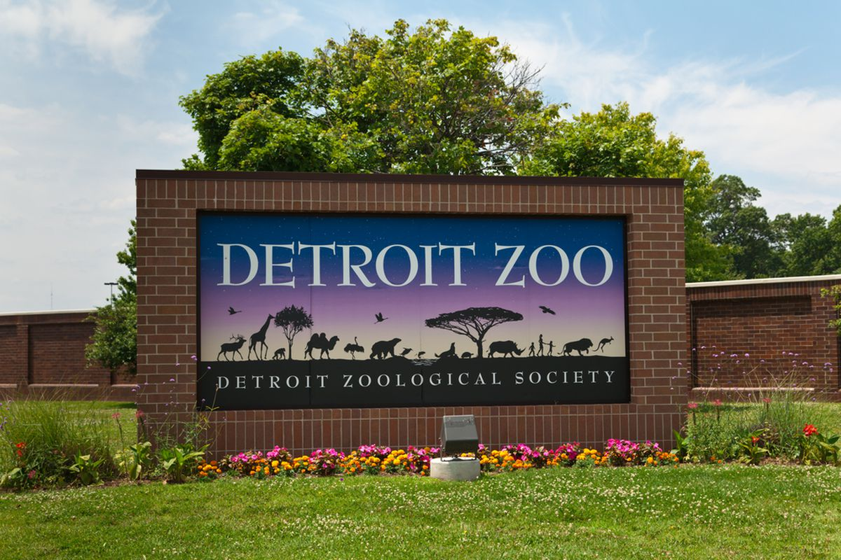 Detroit Zoo begins distributing COVID-19 vaccines for various animals 1