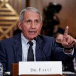 GOP lawmakers call for Pelosi to subpoena Fauci on COVID-19 origin 6