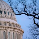 Police officer attacked by woman carrying a baseball bat near US Capitol 8